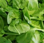 Is Spinach Really a Rich Source of Protein?