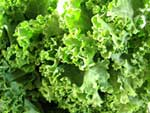 Protein in leafy greens
