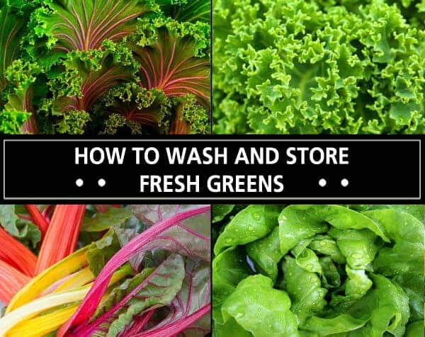 How To Wash And Store Fresh Greens