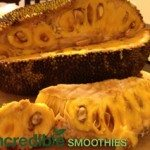 Jackfruit Green Smoothie Recipes, Nutrition and Health Benefits