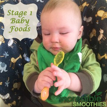 How To Make Homemade Baby Food In Your Blender ...