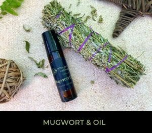 Mugwort & Oil Kit